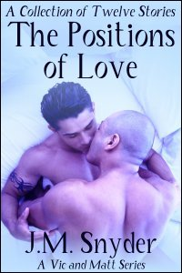 The Positions of Love Box Set by J.M. Snyder
